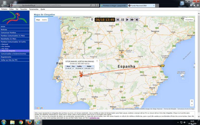 1º pombo comunicado a nível Nacional -Portalegre